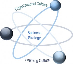 Building a Strategic Learning Culture